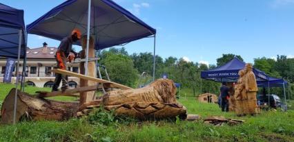 sculptura in lemn cu drujba Pensiunea Cerna 2018