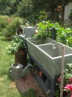 chiuveta din grădină