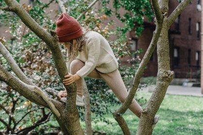 mutarea la țară - cataratul in copaci