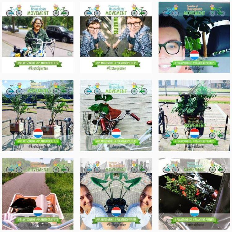 Stekjesbrief instagram marketingscampagne plantsonbike 2020