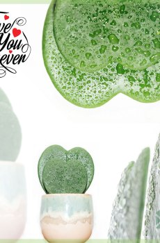 Hoya Kerrii Dubbel Hartjesplant kopen