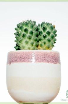 Swedish pink plantenpot bloempot sierpot