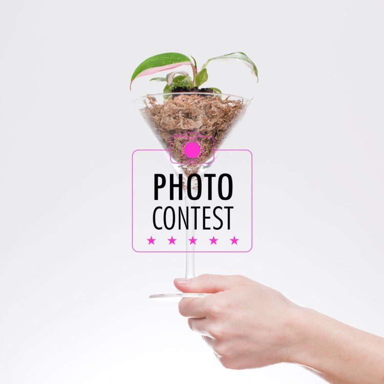 Photocontest GiveAway - Stekjesbrief