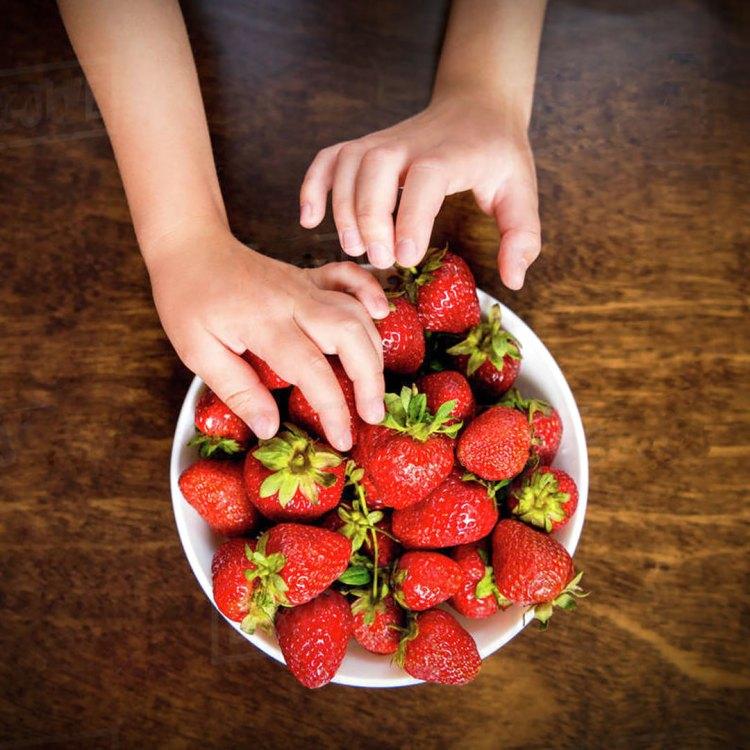 Aardbeien Ostara (doordragend) geworteld stekjes kopen