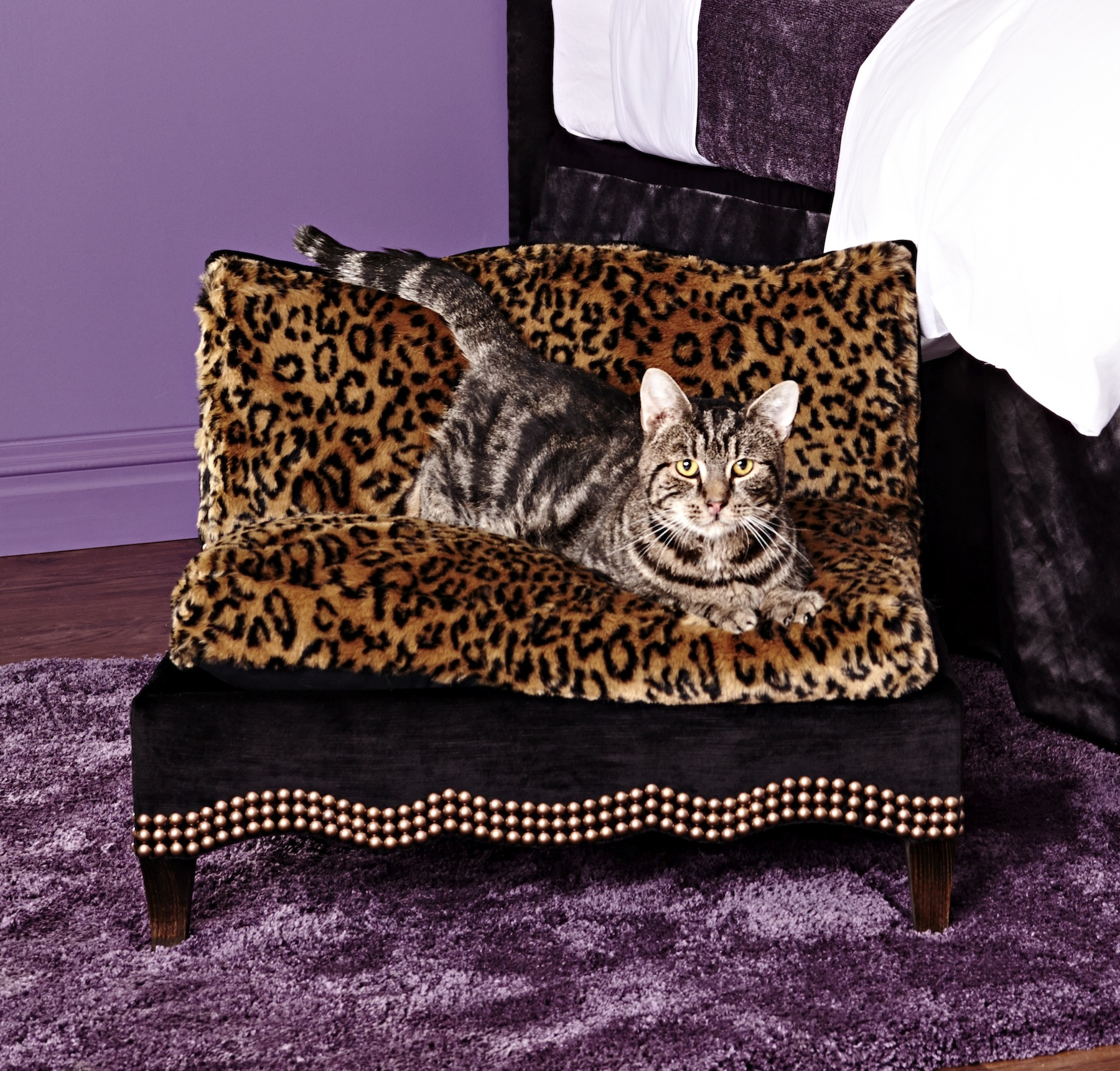Cat Beds For Charity Stellar Interior Design