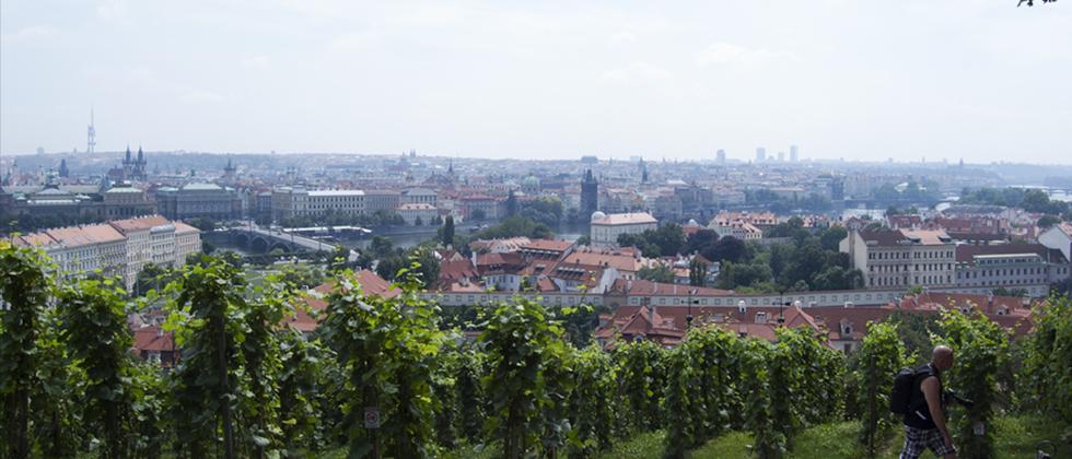 Zomerse Drukte In Praag