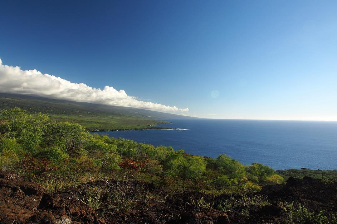 414. Hawai'i coastal views  |  Captain Cook, Hawaii