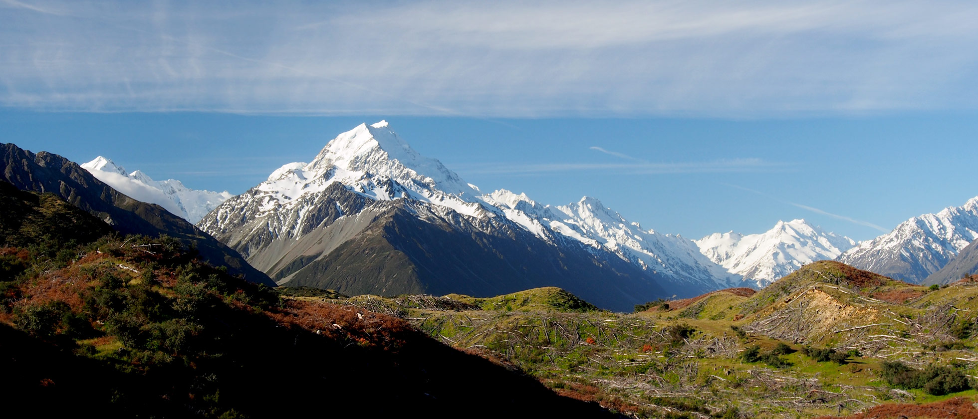 9_Mount-Cook-breed