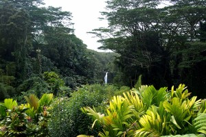 11-Hawaii-watervallen