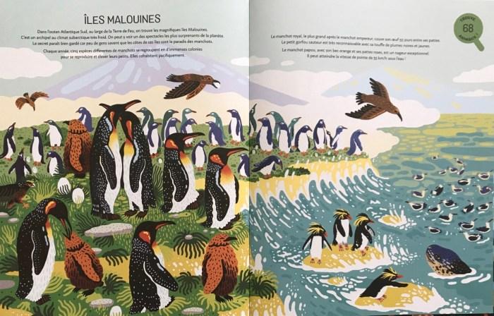 Océans, Mia Cassany et Marcos Navarro, Éditions Nathan