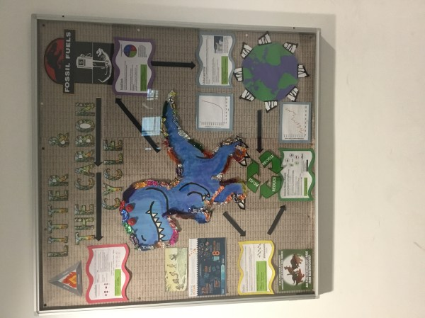 Display Board - Litter Environment And Carbon