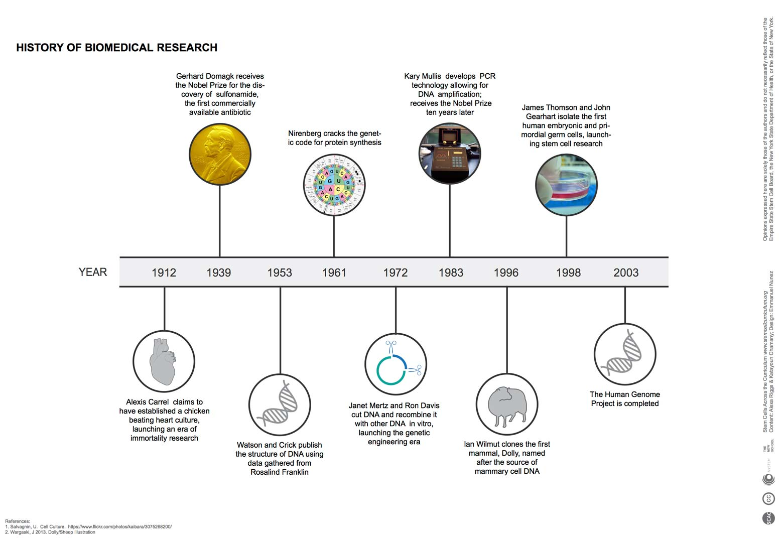 hight resolution of additional timelines can be accessed from the media and infographic section of the stem cells across the curriculum site