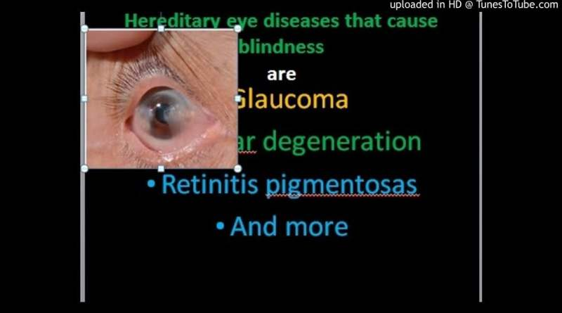 Hereditary Eye Diseases That Cause Blindness