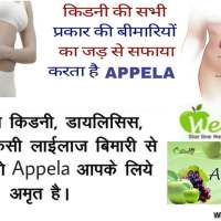 wellway life appela results