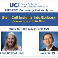 Stem Cell Insights into Epilepsy - Seizures in a Petri Dish?