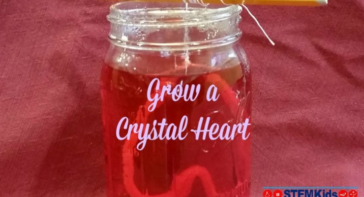 Grow Crystals for Valentine's Day