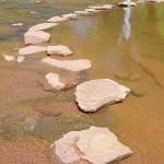 step stones 2