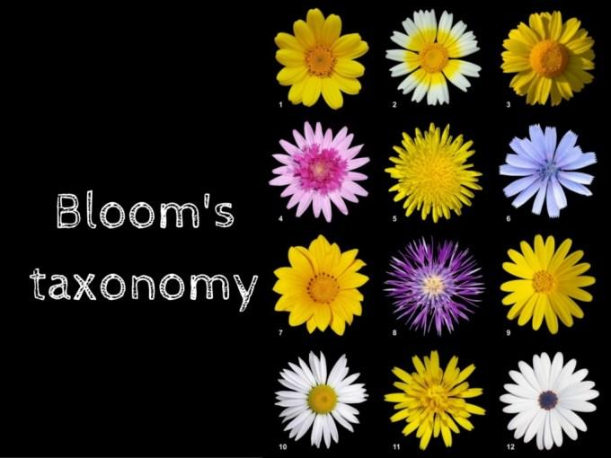 Bloom's taxonomy(1)