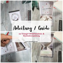 Anleitung Guide