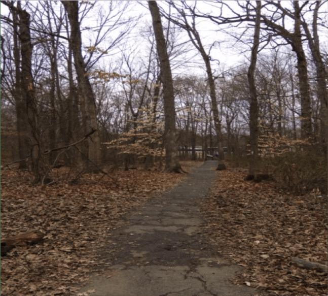 AWR Path Cracks more
