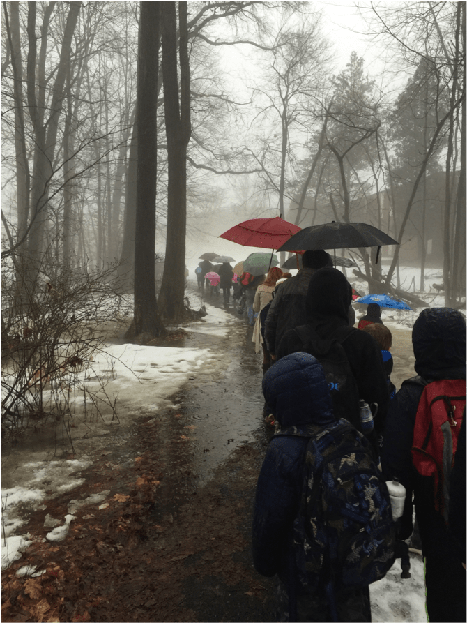 AWR Path flooding