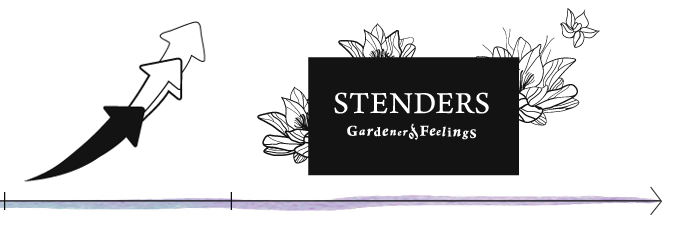 STENDERS Bath and Body Care Cosmetics :: Our history