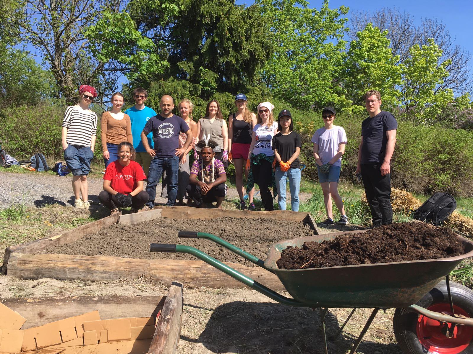Gardening Project 2018