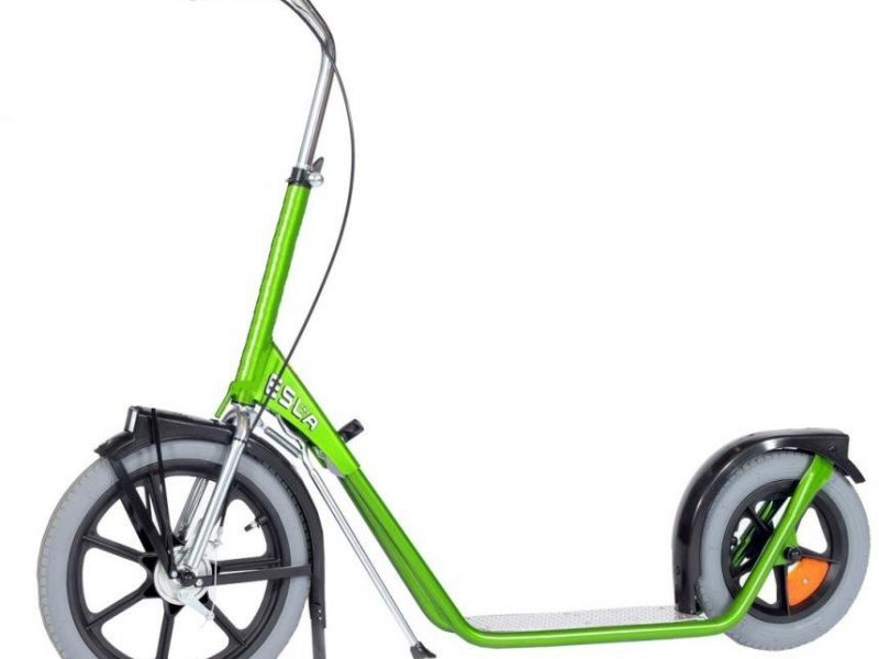 Esla Scooter 4102 step
