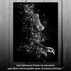 Muse - Tableau Forex