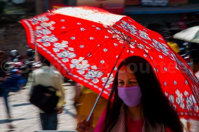 Pollution et pandémies