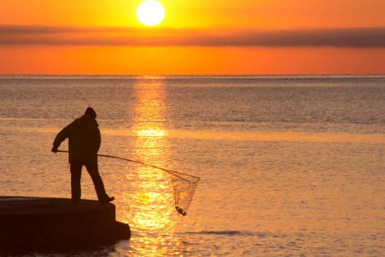 Pêcheur à Collioure