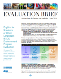Evaluation Executive Summary from Schultz Center