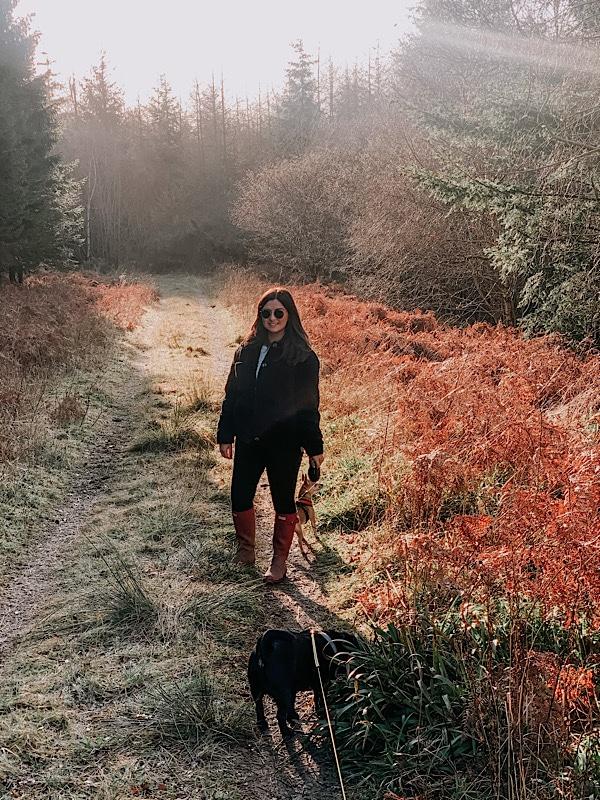 walk in Percy wood