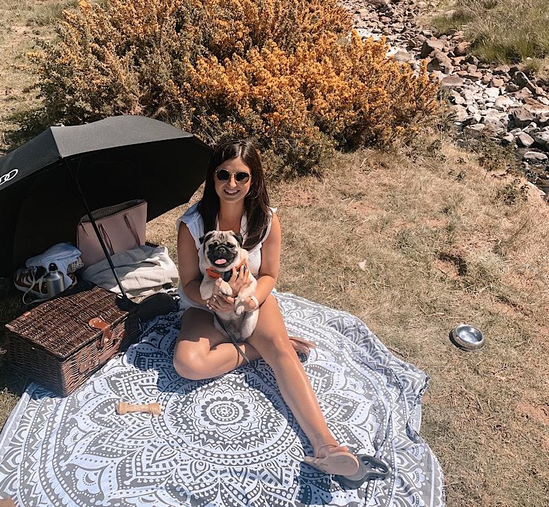 Andes Camping picnic hamper
