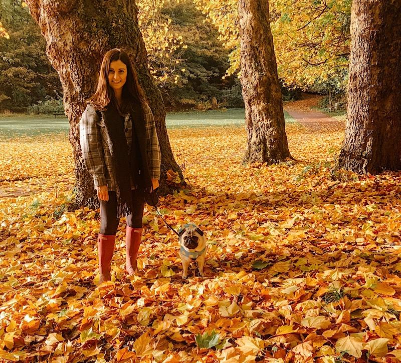 Jesmond Dene autumn