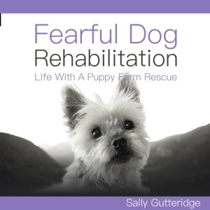 Fearful Dog Rehabilitation by Sally Gutteridge, Narrated by Stephanie Murphy - audiobook