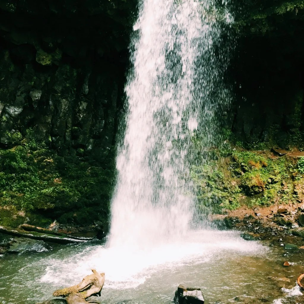 Latourell Falls // Portland, OR // stephanieorefice.net