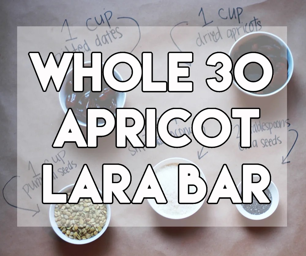 Whole 30 Apricot Lara Bar // stephanieorefice.net