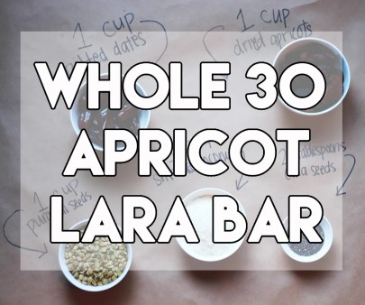 Whole 30 Apricot Lara Bar