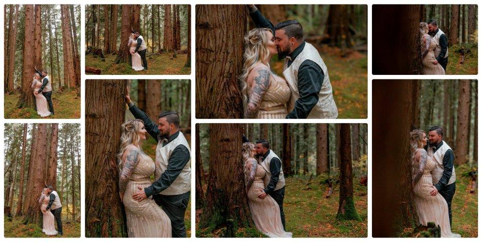 2021 05 22 0032 950x478 The Emerald Forest Elopement | Alicia & Glen