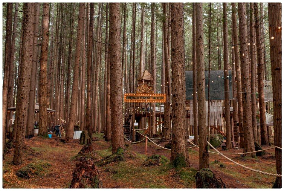 2021 05 22 0052 950x639 The Emerald Forest Elopement | Alicia & Glen
