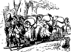from MOTHER GOOSE'S Nursery Rhymes 1877