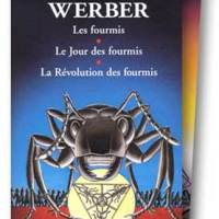 Cycle : Les Fourmis