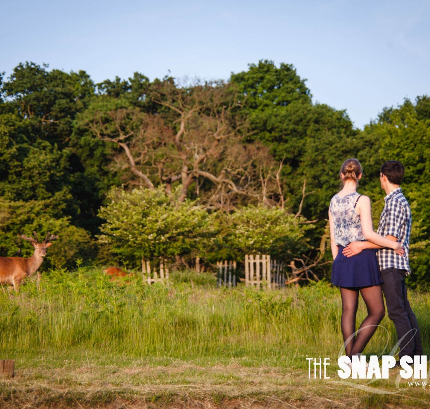 Richmond Park, Engagement shoot