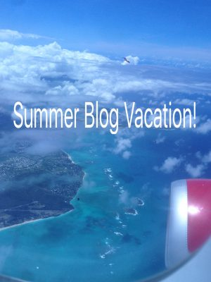 Summer Blog Vacation