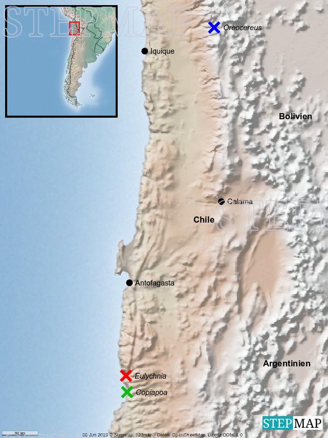 StepMap - Atacama - Landkarte für Chile