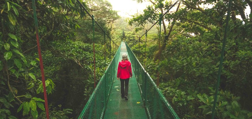 Don't miss this in Monteverde Costa Rica
