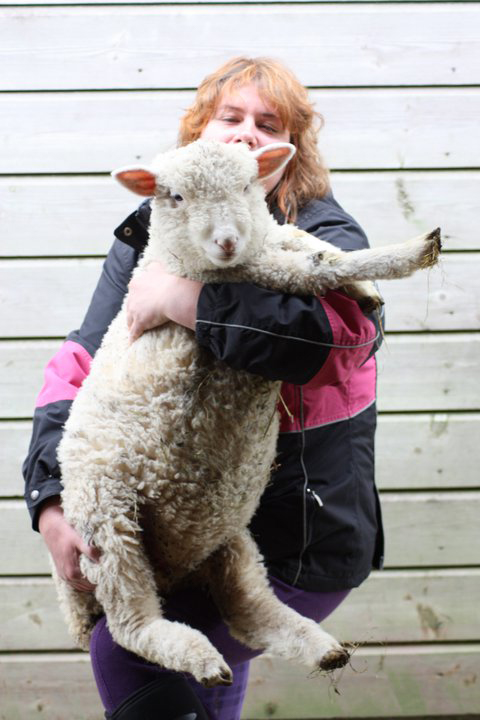 Emma-and-sheep