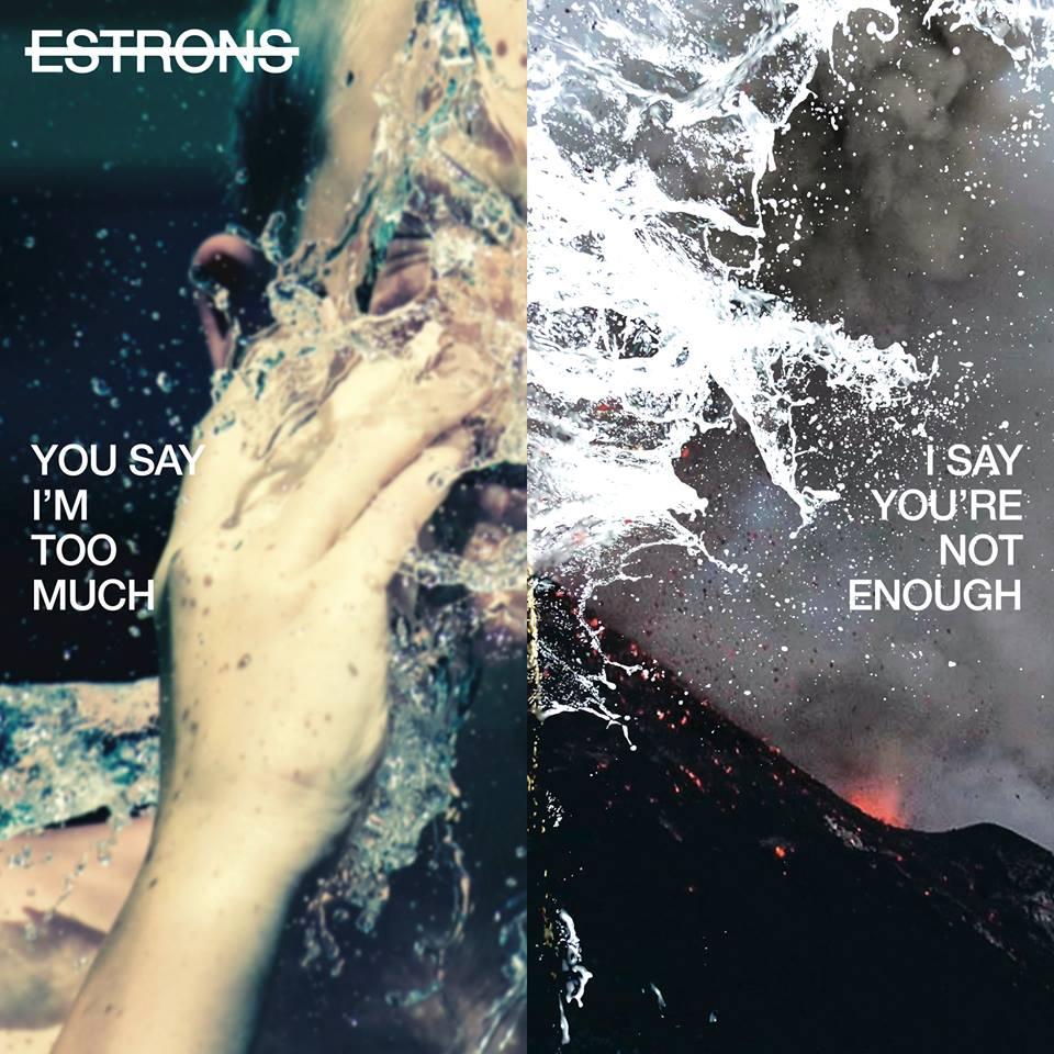 Image result for estrons album artwork