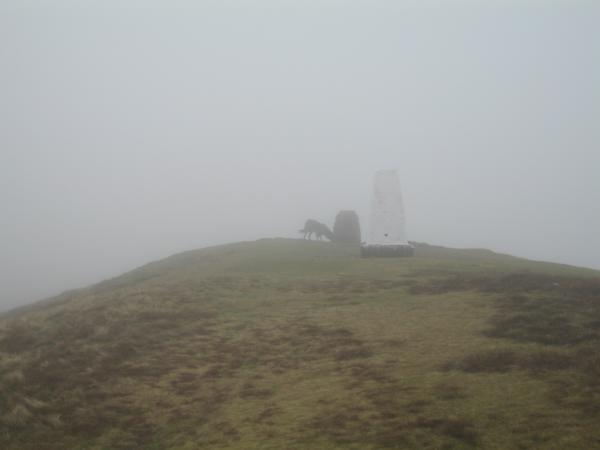 Winder summit